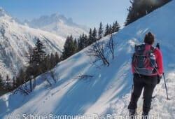 Deuter Rise 26 SL Skitourenrucksack - Ausblick