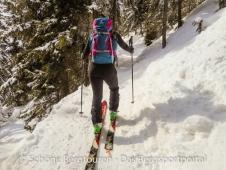 Deuter Rise 26 SL Skitourenrucksack - Verschneiter Wald