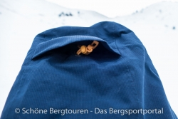 The North Face NFZ Insulated Jacket -