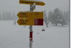 Starker Schneefall am Kleinen Ahornboden