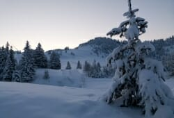 Alpengasthof Hoermoos - Morgendaemmerung