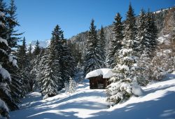 Alpengasthof Hohe Burg - Skitour Blaser