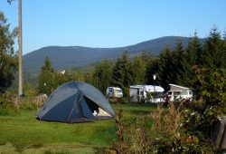 Campingplatz Harz-Camping - Campingplatz im Sommer