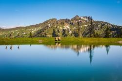 Das Alpenhaus Gasteinertal - Bergsee
