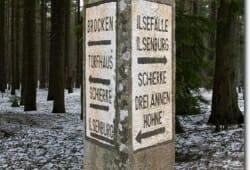 schierke-april-2009-009