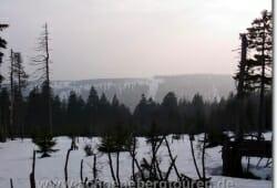 schierke-april-2009-011