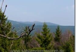 schierke-april-2009-059