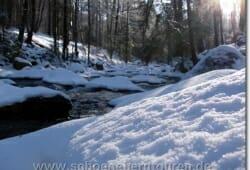 harz-schierke-dezember-2009-008