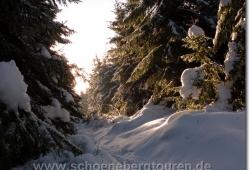 harz-schierke-dezember-2009-010