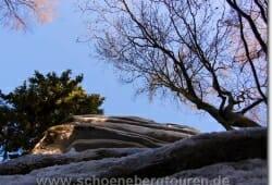 harz-schierke-dezember-2009-014