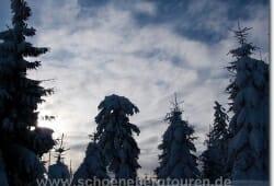 harz-schierke-dezember-2009-046