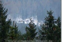 harz-schierke-dezember-2009-101
