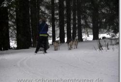 harz-schierke-dezember-2009-132
