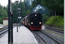 schierke-juni-2009-153