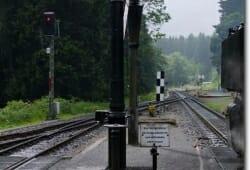 schierke-juni-2009-158