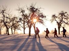 Gaestehaus Rottenspacher - Winterwandern