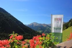 Hotel Jaegerhof - Ausblick von der Terasse