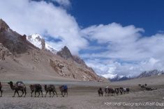 K2 Expedition 2011 11