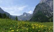 Im Falzthurntal - Hinten in der Mitte die Lamsenspitze