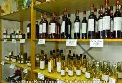 Limousin - Veredelte Walnuesse