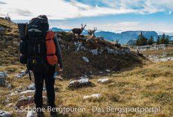 Maier Sports Tajo Zip-Off Wanderhose - Haute-Savoie