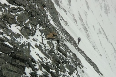 Mount Everest Expedition 2010 #28