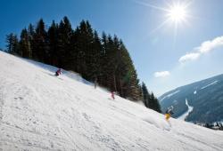Filzmoos - Skifamilie am Hang