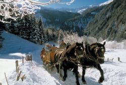 Grossarltal - Pferdekutsche