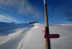 Das Hoechste - Winterwanderweg Gottesacker