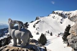 Brauneck Bergbahn - Am Idealhang