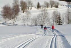 Mauth-Finsterau - Mehr 100 km grossartige Loipen