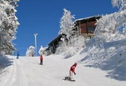 Hohenbogen - Skifahrer auf Piste