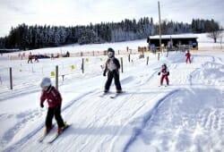 Skigebiet Sandl-Viehberg - Skischule