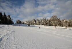 Skigebiet Sandl-Viehberg - Viehberg