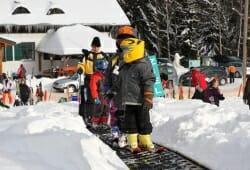 Skigebiet Sandl-Viehberg - Zauberteppich