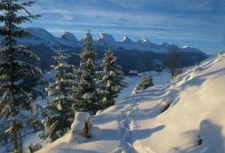 Toggenburg - Winterlandschaft