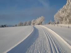 Winterberg - Skiliftkarussell - Loipe