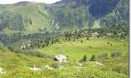 Wiesen unterhalb des Col de Tricot