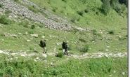 2 gruene Schraenkwaende beim Abstieg vom Col de Tricot