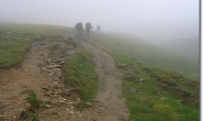Die gruenen Schrankwände verschwinden im Nebel