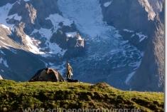 Zeltstelle vor dem Mont Blanc de Courmayeur
