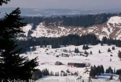 Rueckblick zum Alpengasthof Hoermoos