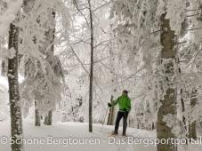 Im Wintermaerchenwald