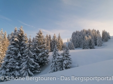 Schoene Winterlandschaft