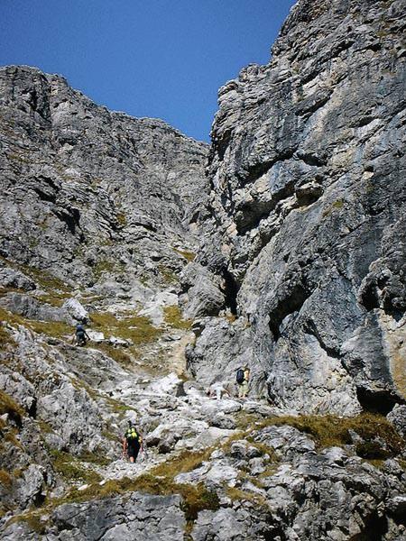 Bregenzerwald - Alpiner Steig am Widderstein