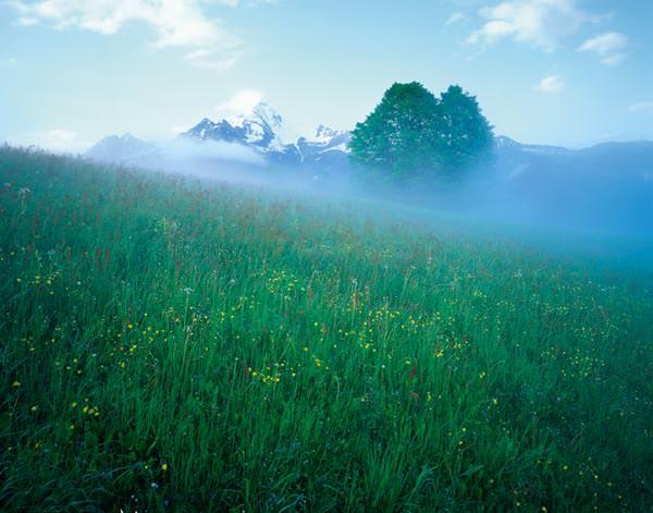 Ahornspitze - Zillertaler Alpen