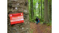Liebe Berg- und Outdoorfreunde, Zum dritten Mal in Folge findet im Juni 2011 die gemeinsame Wander-Veranstaltung von Bayern Tourismus Marketing GmbH (by.TM) und Outdoor-Footwear-Spezialist HANWAG statt. Vom 18. bis zum […]