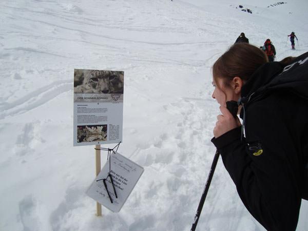 Dynafit - Skitouren 2