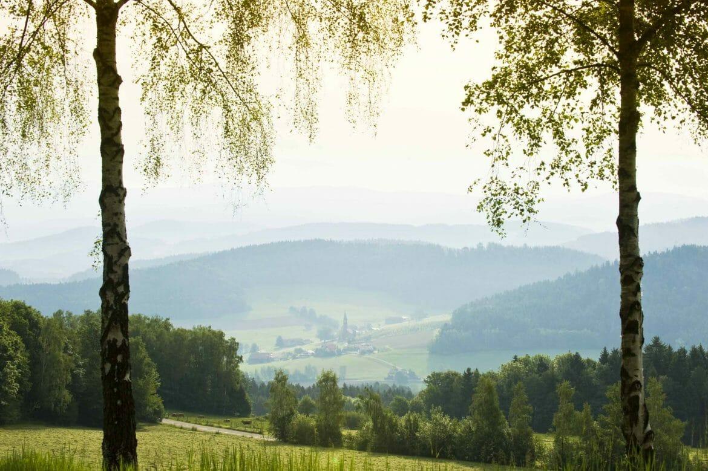 Bayerischer Wald - Landschaft