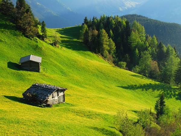 Zillertal - Schoene Almwiesen